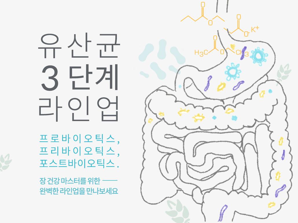 유산균3단계라인업