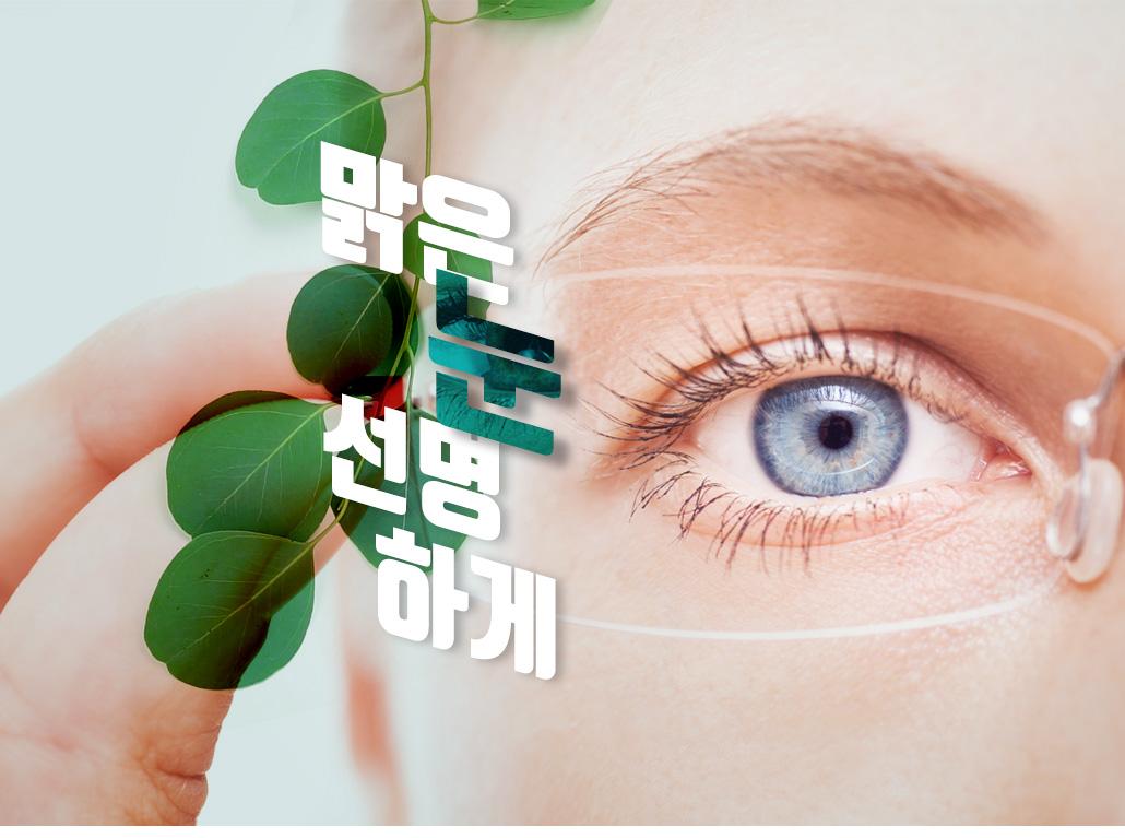 눈건강기획전
